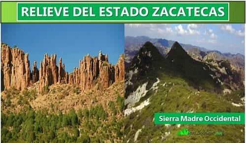 sierra madre occidental zacatecas